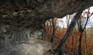 Redbud Valley Nature Preserve_Pic